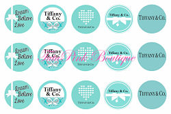 Bottle Caps Tiffany & Co Inspired