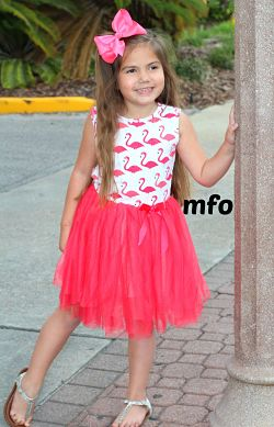 Boutique Tank Tutu Dress Flamingo